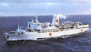 Nicci Pugh - White Ship Red Crosses