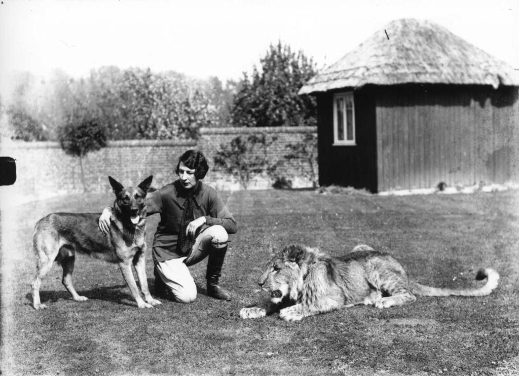 Simba the Lion with Helen Silver